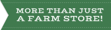 More than just a farm store